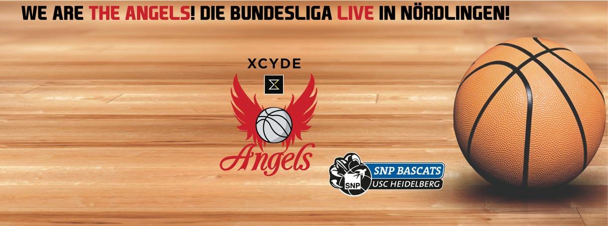 XCYDE Angels - SNP BasCats USC Heidelberg