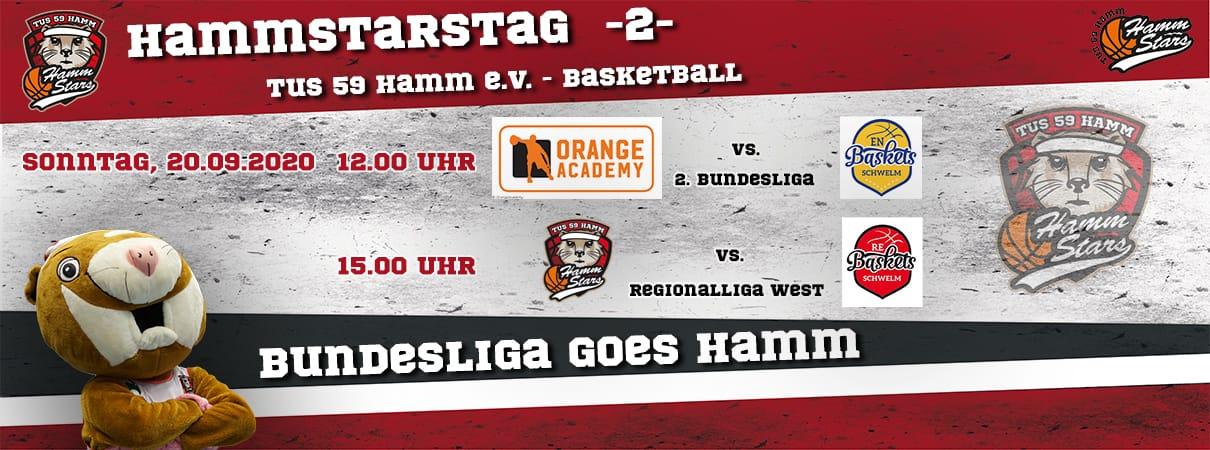 HammStarsTag - Tag 2
