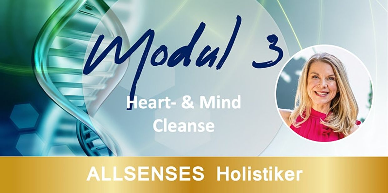 Modul 3 ALLSENSES HOLISTIKER
