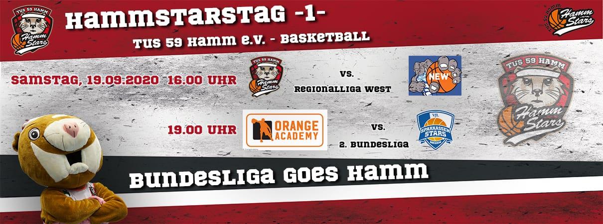 HammStarsTag - Tag 1